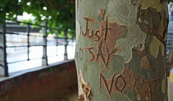 Tree with just say no