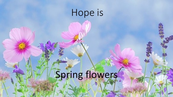 Hope is Spring Flowers