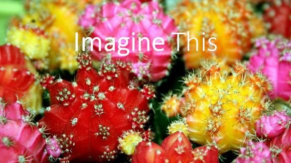 Imnagination