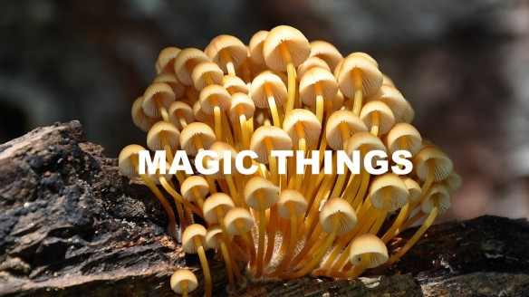 Magic Things
