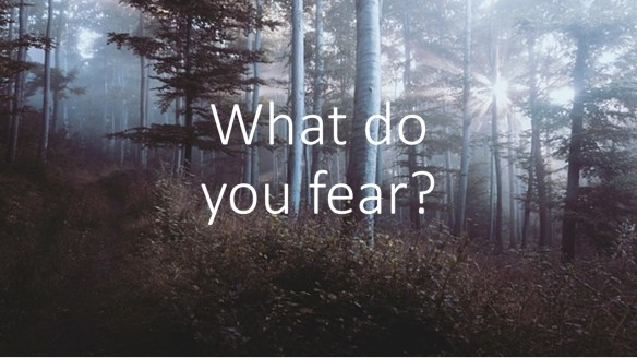What do you fear
