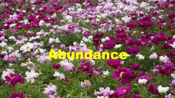Having Abundance