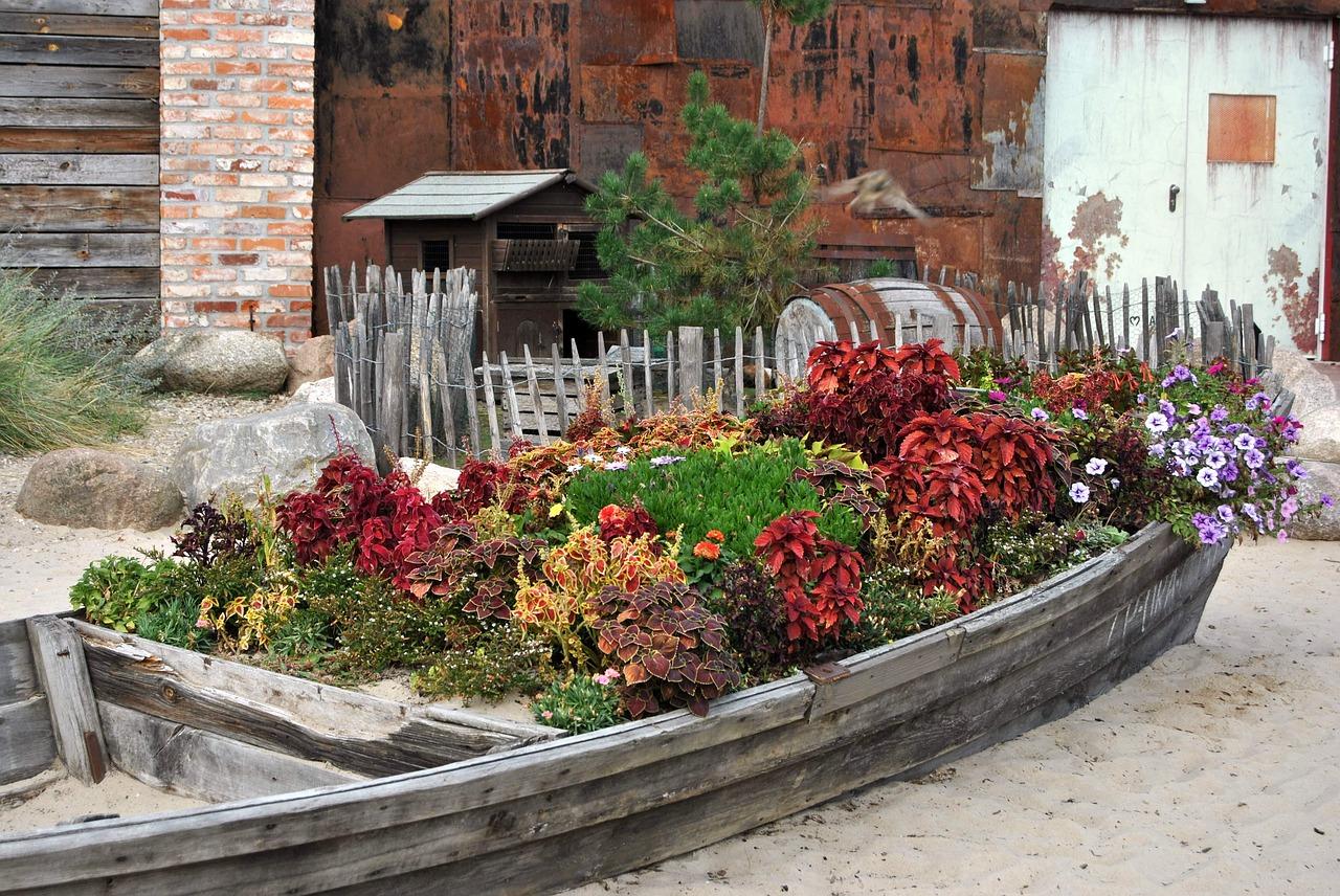 Garden in a boat.