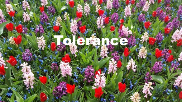 Tolerance.