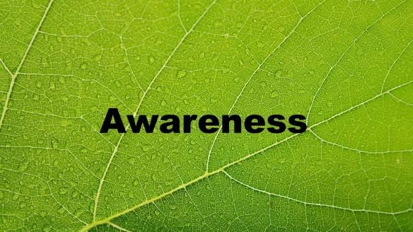 Awareness.